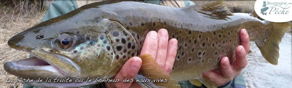 Bourgogne Pêche – François Deline